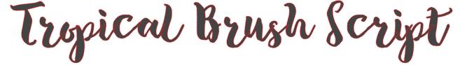 Brush script fonts for silhouette studio