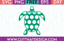 Free polka dot turtle svg