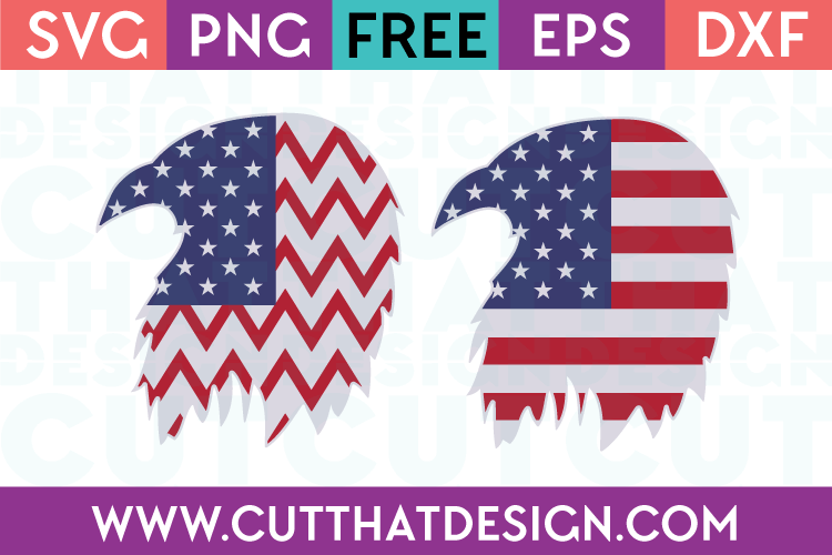 USA Flag Flying Eagle Designs 2