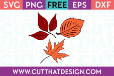 Fall leaves svg