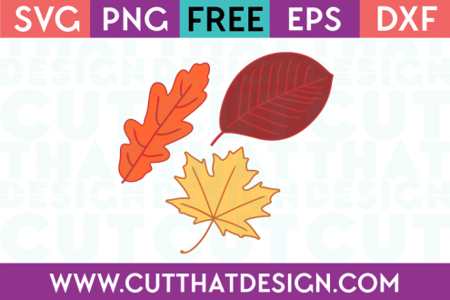 View Floral Acorn, Fall, Svg/Dxf/Eps/Png/Jpg/Pdf Image
