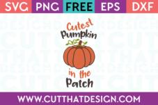 SVG Free Pumpkin Cutting FIle
