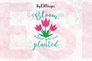 SVG Bloom where you are planted